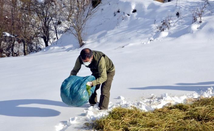 Kocaeli'de yaban hayvanları için doğaya yem bırakıldı