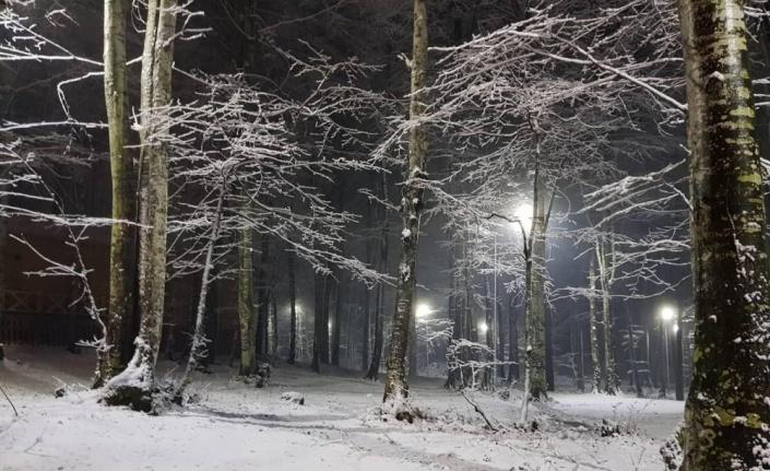Kocaeli, Sakarya, Karabük ve Bartın'ın yüksek kesimlerine kar yağdı