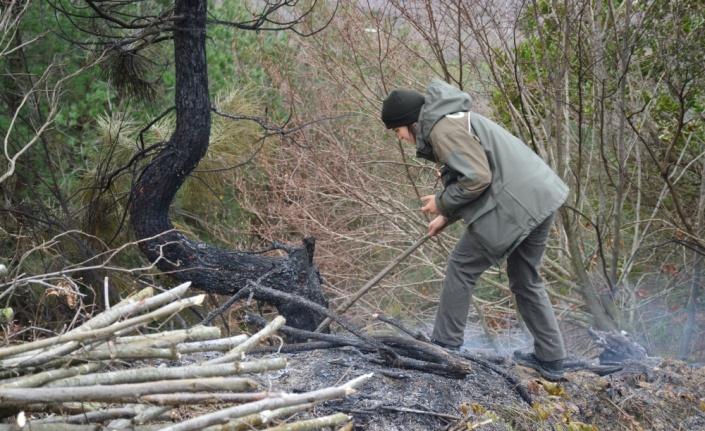 Sakarya'da fındık bahçesinde yangın