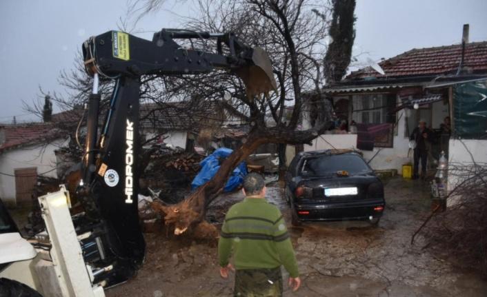 Tekirdağ'da şiddetli rüzgar nedeniyle elektrik direği ve ağaçlar devrildi