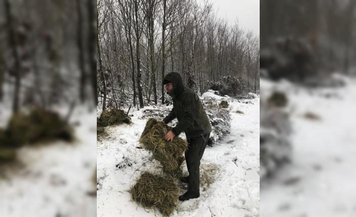 Tekirdağ'da yaban hayvanları için doğaya yem bırakıldı