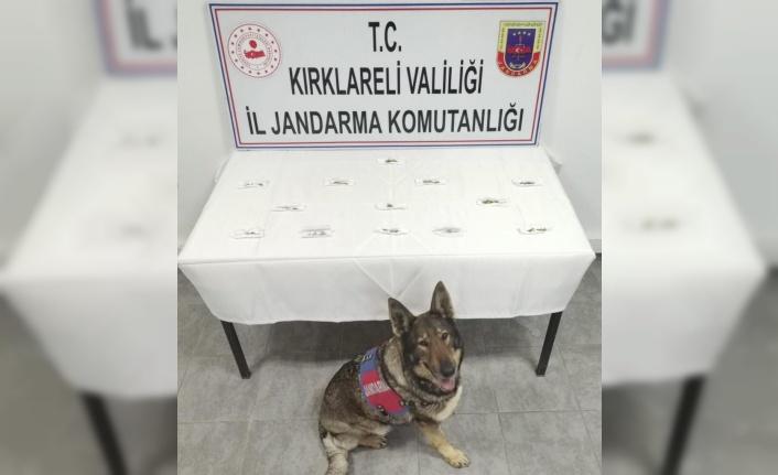 Kırklareli'nde uyuşturucu operasyonunda 2 şüpheli yakalandı