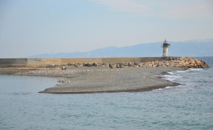 Balıkçılar, derelerden gelen çakıl ve kumla dolan limanın temizlenmesini istiyor