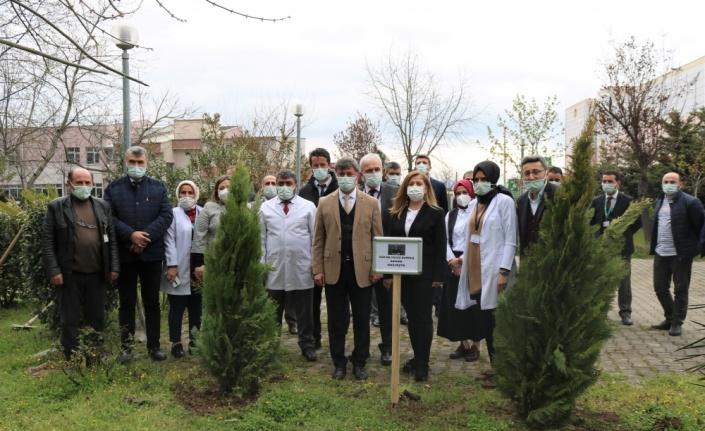 Bursa'da Kovid-19'dan hayatını kaybeden Radyoloji Uzmanı Dr. Yavuz Durmuş anısına fidan dikildi