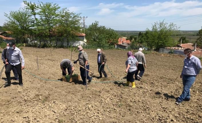 Edirne'de huzurevi sakinlerinin hareketliliklerini artırmak amacıyla tarımsal faaliyetler düzenleniyor
