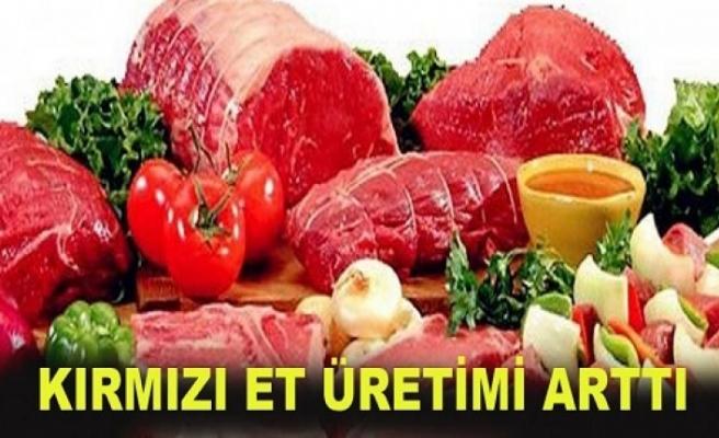 Kırmızı Et Üretimi Yüzde 20 Arttı