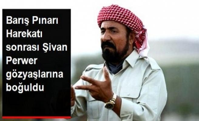 Şivan Perver'den Barış Pınarı Harekatı ağlaması...