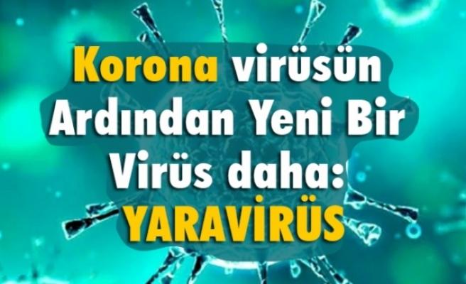 Korona Ardından Yeni Bir Virüs daha; Yaravirus