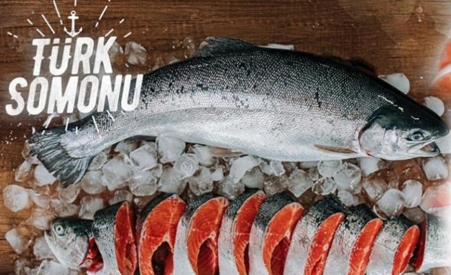 COVİD- 19'a Karşı Balık Tüketim Kampanyası