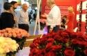 Kocaelili süs bitkileri ve peyzaj firmaları, satış...