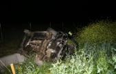 Domuza çarparak devrilen otomobildeki 6 kişi yaralandı