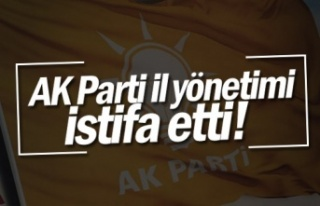 AK Parti Kocaeli il yönetimi istifa etti