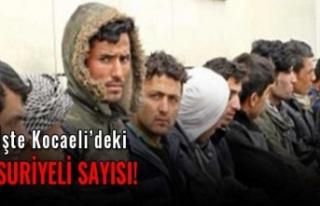 Kocaeli'de kaç Suriyeli var ?