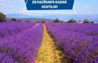 Gelecek Turizmde Başvuru Tarihi 28 Haziran'a Kadar...