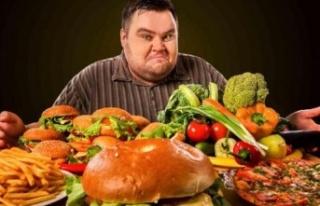Obezite Karşıtı Bakteri