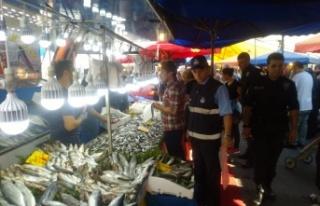 Darıca'da Balık Tezgahları Denetim Altında