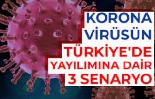 Korona Virüsünün Türkiye'de Yayılımına Dair...
