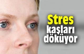 Stres ,Kaşları döküyor.
