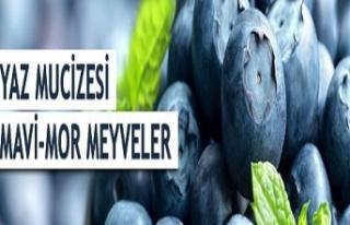 Yaz Mucizesi: Mavi-Mor Meyveler
