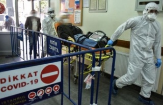 Pandemide Yaşlı Hastalarda Sağlık Problemlerine...