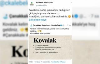 Balıkesir ve Çanakkale belediyelerinin sosyal medyadaki...
