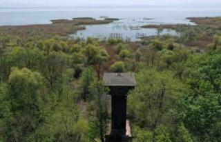 Kuşcenneti Milli Parkı baharda binlerce kanatlı...