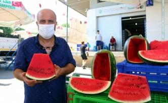 Doğu Marmara'nın karpuzları Kocaeli'den gidiyor