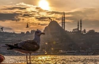 """AFAD : """"İstanbul'un Havasında İnsan Sağlığını Tehdit Eden Bir Durum Yok"""""""