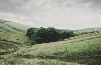 10 İl Tarım Alanını Genişletti