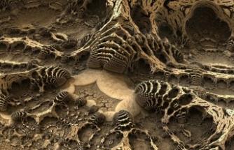 Bilim İnsanları Marslı Fosili Bulmak İçin Avustralya'da Eğitim Alıyor