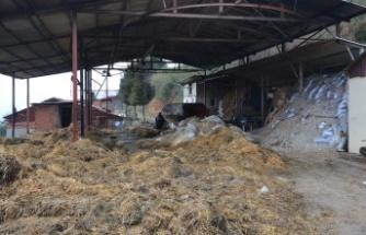 İzmit Belediyesi yangın mağdur vatandaşın yardımına koştu