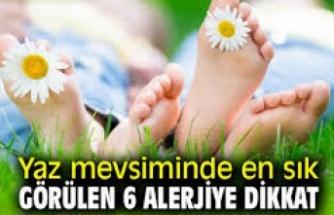 Yaz Mevsiminde En Sık Görülen 6 Alerji