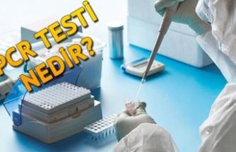 PCR Testine Kısıtlama Kararı