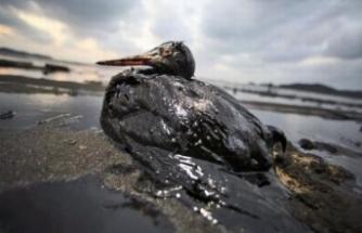 Çevreyi kirletenlere geçen yıl 16 milyon liradan fazla ceza kesildi