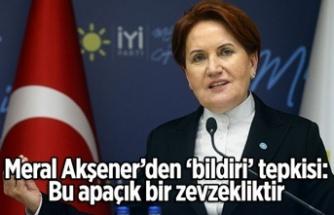 Meral Akşener'den 'bildiri' tepkisi: Bu apaçık bir zevzekliktir
