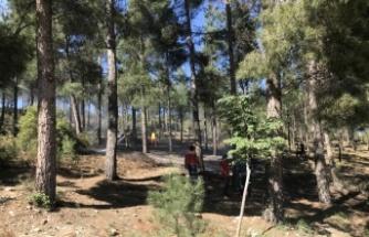 Kent Ormanı'nda çıkan örtü yangını söndürüldü