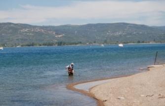 Marmara'da oluşan deniz salyası balık popülasyonunu tehdit ediyor