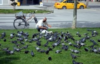 """Hayvansever vatandaş """"tam kapanma"""" sürecinde güvercinleri unutmadı"""