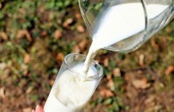 Süt Üretimi Yüzde 7.5 Azaldı