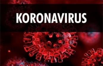 20 Koronavirüs Miti