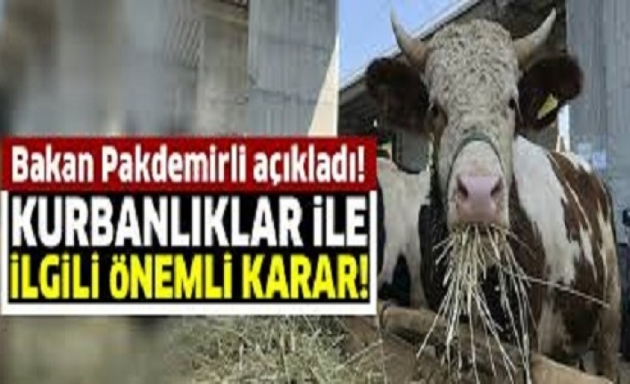 Elde Kalan Kurbanlıkları Et ve Süt Kurumu (ESK) Alacak