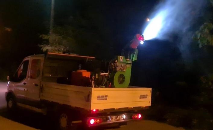 Böcek istilasına karşı Büyükşehir'den topyekün önlem