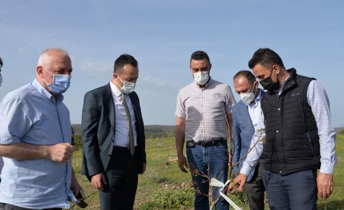 Tarım arazileri üretime kazandırılacak