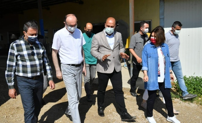 Balıkesir Valisi Hasan Şıldak'tan Bandırma Koyunculuk Araştırma Enstitüsüne ziyaret