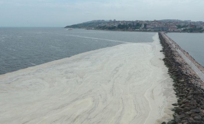 Balıkesir'de müsilaj temizleme seferberliği başladı