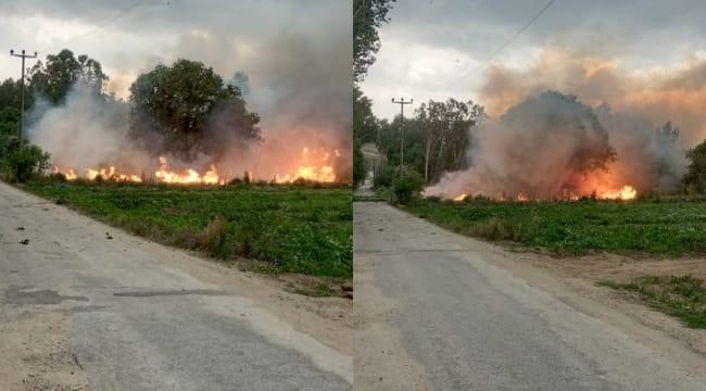 Fırtınada devrilen ağaçlar elektrik tellerini kopararak ekili arazide yangın çıkardı