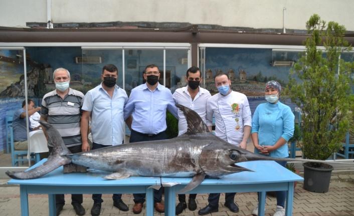 Saros Körfezi'nde yaklaşık 3 metre boyunda 88 kilogram ağırlığında kılıç balığı yakalandı