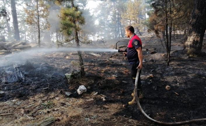 Ormanlara giriş yasağı 30 Eylül'e uzatıldı