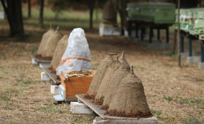 Trakyalı arıcılara özgü konik sepet kovan geleneği nesilden nesile aktarılıyor