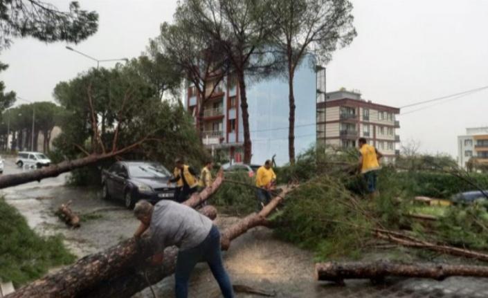 Aydın Büyükşehir Belediyesi Nazilli'de seferberlik başlattı
